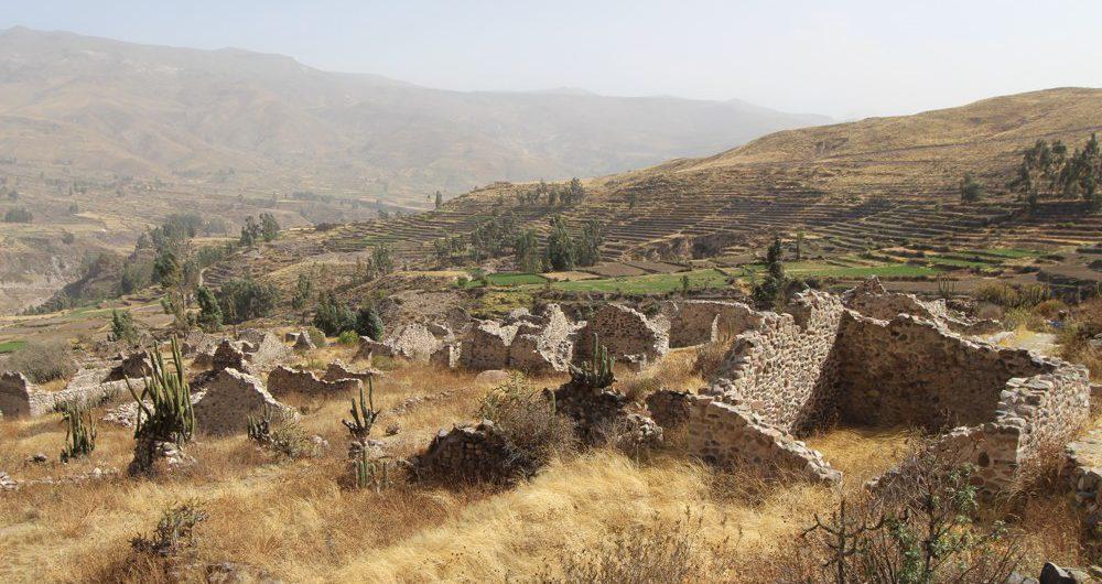 Hiking to the Uyo Uyo ruins from Yanque